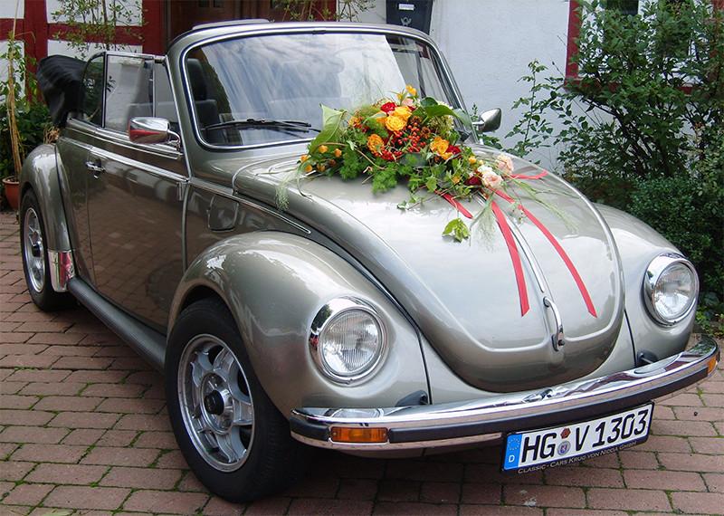 VW Kaefer1303-platin_02